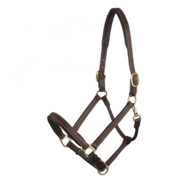 LeMieux Padded Leather Headcollar